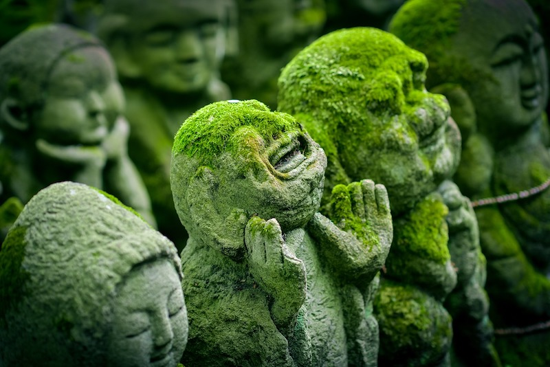 Íshvara Pranidhana: Entrego, confio, aceito e agradeço | Chandrika Yoga
