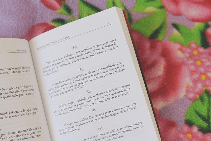 livros-yoga-2014
