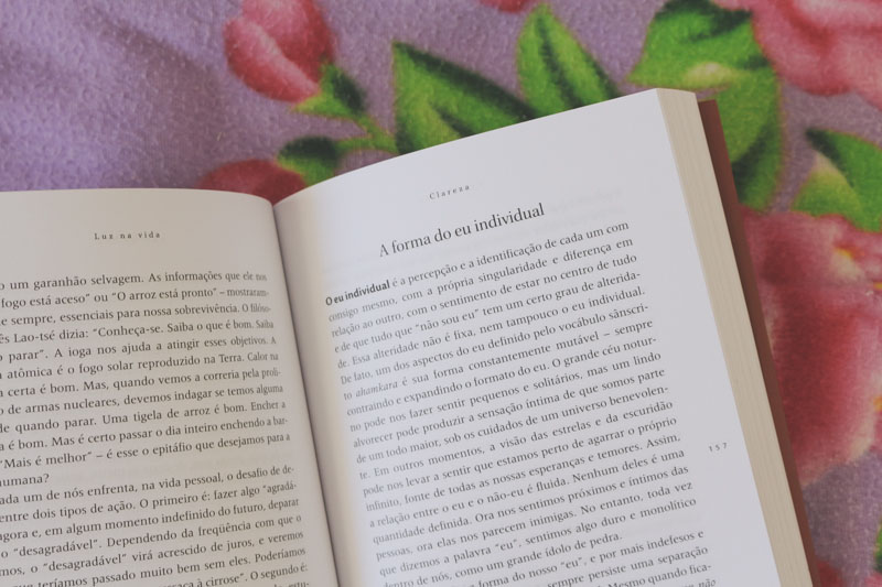 Livros sobre Yoga: indicações para estudos intermediários | Camile Carvalho
